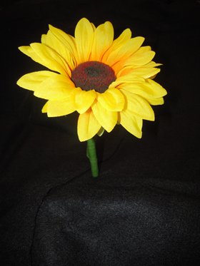 Sunflower Pen