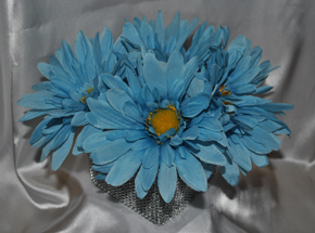 wedding blue gerbera