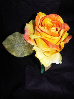 Yellow And Orange Rose Pen